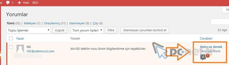 Wordpress Yorum Taşıma
